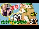 【Cat Mario 3D】我好冷靜呀呀呀呀花!!~ Stage 1PART1打波子機