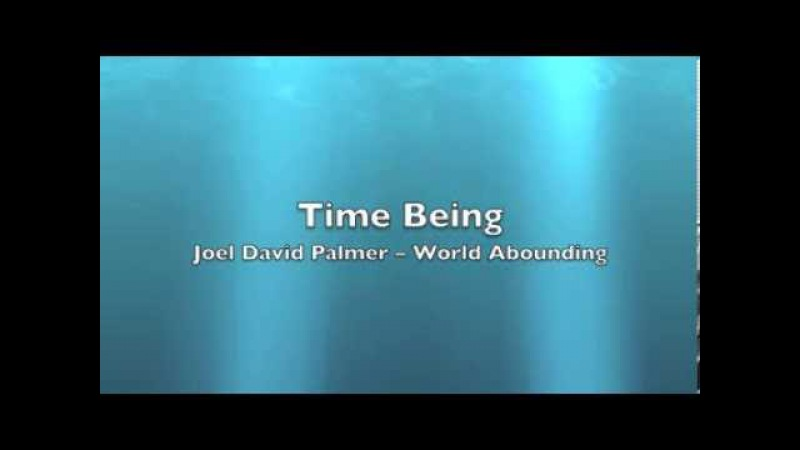 Time Being by Joel David Palmer -- World Abounding
