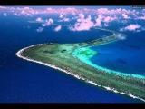 Удивительная природа барьерного рифа Австралии! HD