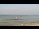 26.09.2015 Дельфины из Черного моря играют с отдыхающими в Анапе