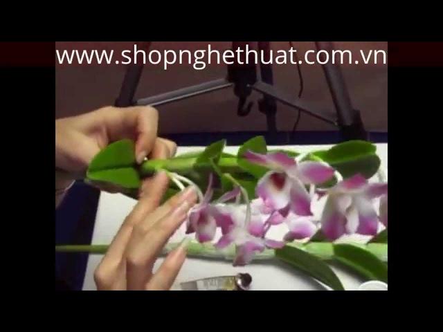 Dạy cách làm hoa đất Nhật Bản - Hoa Hoàng Lan Phần 3