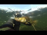 Подводная охота, 7м. Судак около 7кг. Взят днём, в динамике, с подхода, из компании.