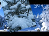Белый снег Олег Газманов