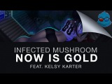 Infected Mushroom - Now is Gold (feat. Kelsy Karter)