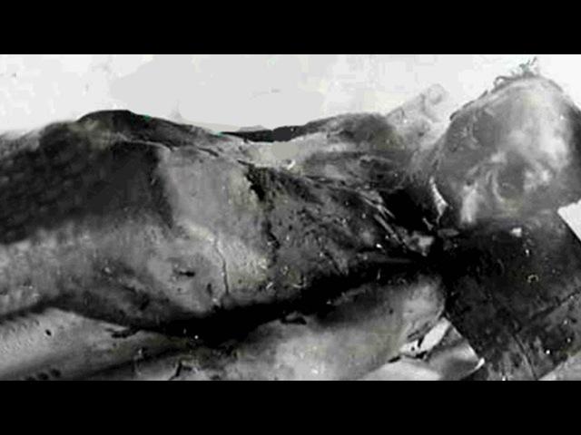 Перевал Дятлова. Отчислены по случаю смерти