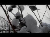 В снежной тишине под музыку Алсу и Лев Лещенко - Такого снегопада,такого снегопада. Picrolla