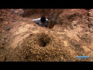 Муравьи - тайная сила природы (2005) _ жизнь в биосфере