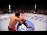 MMA This Beautiful Sport