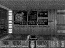 Doom on CGA monochrome 16 color EGA and the NES
