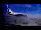 Очевидцы запечатлели, как сильный ветер сдувает Boeing-737 в Норильске