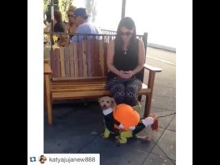 """Aleksandra Gozias on Instagram: """"#хахахаха"""""""