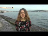 Турецкие студенты вслед за поэтом в стихах извинились перед Россией за сбитый Су-24