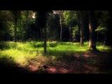 Ulrich Schnauss-Wherever You Are