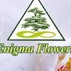 Enigmaflowers Flowers