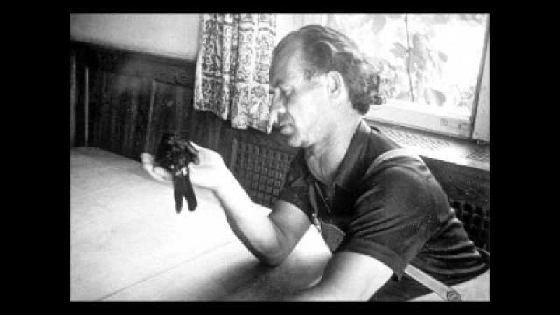 08 Orginal Vortrag Bruno Groening Wien 1958.wmv
