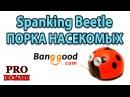 Сумасшедшая порка насекомых. Spanking Beetle. Игрушка для детей. (Banggood)