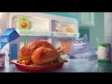 Видео к мультфильму «Тайная жизнь домашних животных» Тизер-трейлер (дублированный)