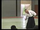 Fujita sensei Gyaku Hanmi