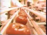 U-MV021 - Shonen Knife - Tomato Head