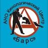 Дрессировка собак в Новосибирске
