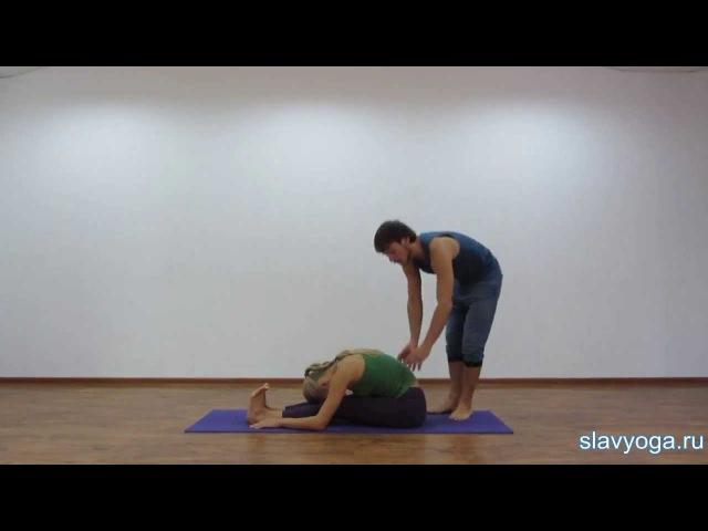 Пашчимоттанасана 💎 Йога для начинающих ⚡ Асаны йоги ⭐ SLAVYOGA