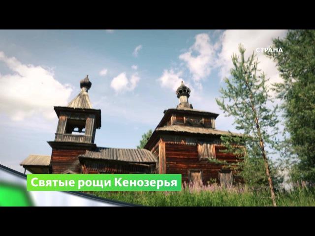 Кенозерье | Природа | Телеканал