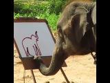 Автопортрет слона