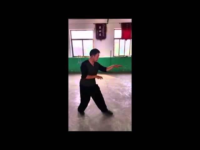 Song Style Xingyi Santi Shi 宋氏形意三体式 Zhao Chuan hui