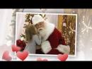 Детская новогодняя песня - Новый год у ворот