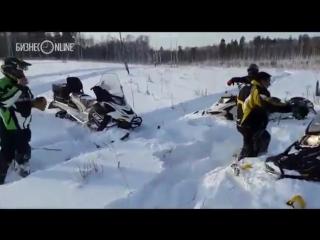 Под Набережными Челнами туристы на снегоходах издеваются над лосём!