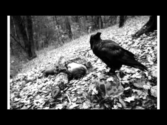 Чёрный ворон Протяжная песня донских казаков