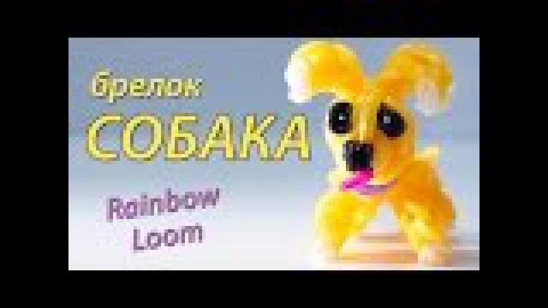 СОБАКА (щенок) из Rainbow Loom Bands. Урок 98