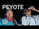 Peyote, the San Pedro Cactus. The Forerunners of the Inca History - Planet Doc Full Documentaries