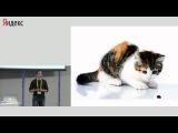 007 Создание модулей для API Яндекс Карт – Всеволод Шмыров