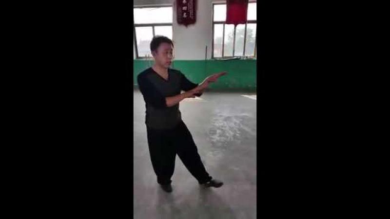 Song Style Xingyi Beng Quan 宋氏形意崩 Zhao Chuan hui
