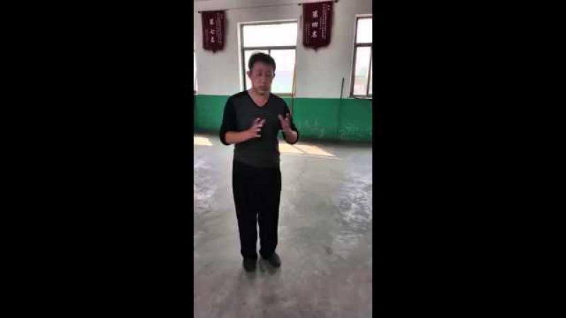 Song Style Xingyi Pi Quan Zuan Quan 宋氏形意劈拳和钻拳