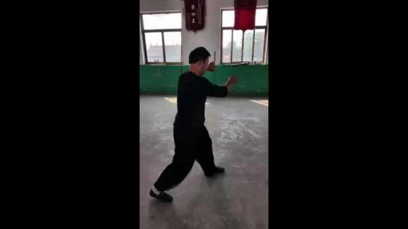 Song Style Xingyi Pao Quan 宋氏形意炮拳 Zhao Chuan hui