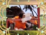 Как назвать эту любовь/Iss Pyaar Ko Kya Naam Doon (2011 - 2012) Русский ТВ-ролик