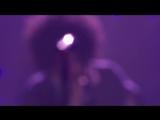 Schiller feat. Kim Sanders - Delicately Yours (Live)