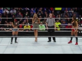 (WWEWM) Survivor Series 2014 - AJ Lee (c) vs. Nikki Bella (Divas Championship)