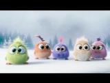 Поздравление с наступающим от Angry Birds