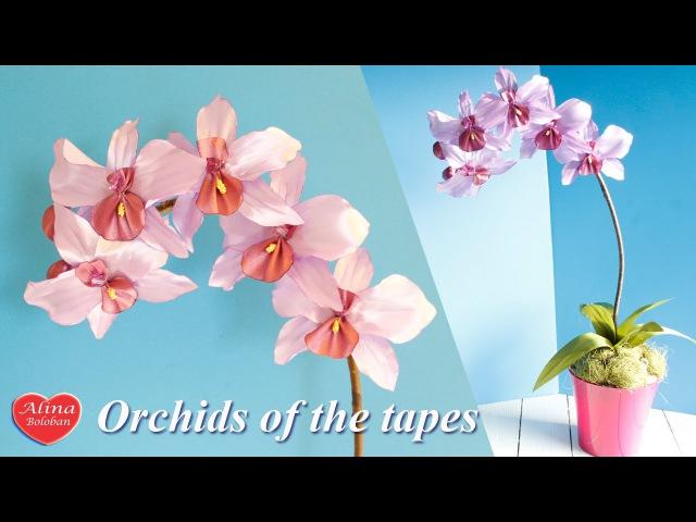 Орхидея из Ленты . Подарочный горшочек / Orchids of the tapes. tutoria. gift pot