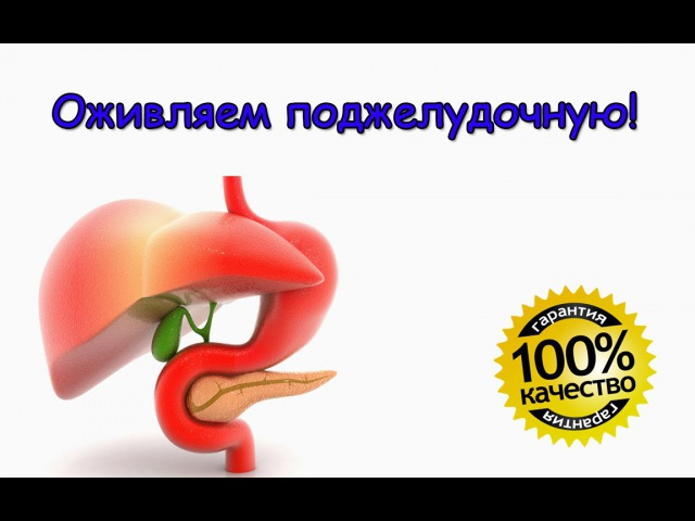 Поджелудочная железа. Эффективное лечение поджелудочной железы.