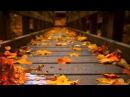 Невероятно красивая музыка Легран Саксофон Michel Legrand Музыка