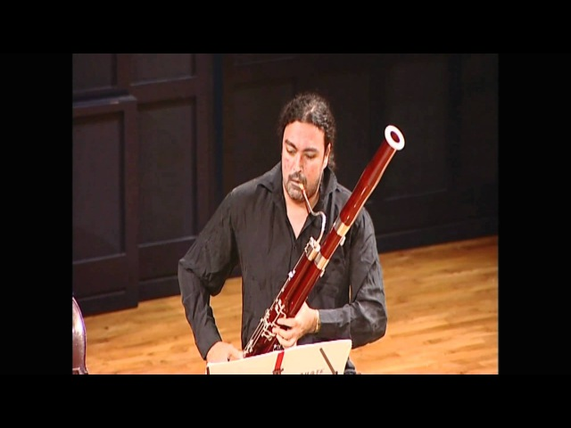 W.A.Mozart: Sonate for bassoon cello K.292 Boudreault Brendstrup, International Music Festival