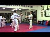 Uechi Ryu Karate - Seisan Bunkai - Part 1