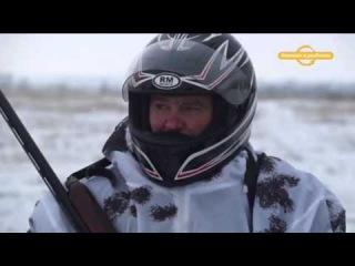 Охота на лисиц (продолжение) Охотничьи экспедиции