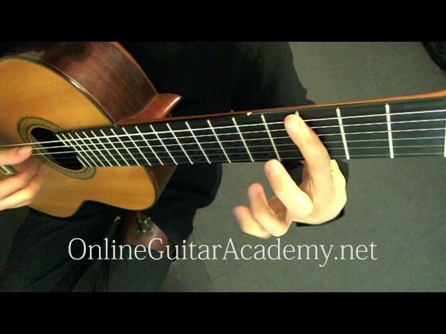 Camille Saint-Saëns - Danse macabre, op. 40 - Guitar Transcription