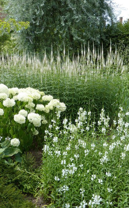 Белый сад: примеры ландшафтного дизайна на даче