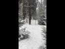 Лесной каток. Охта-парк. Февраль 2016